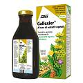 GALLEXIER Tonico Carciofo  250 ml