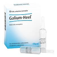 GALIUM 10F 1,1ML HEEL